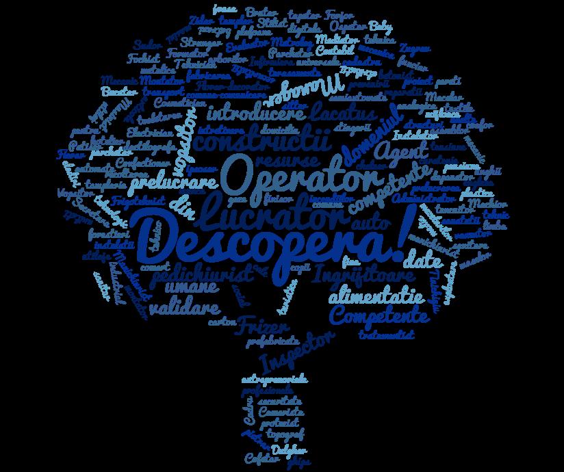 wordcloud-cursuri
