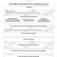 Model supliment descriptiv al certificatului – fata